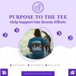 Pink Pet Shop & Supplies Instagram Post